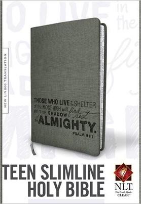 NLT Teen Slimline Bible LL Gray (Imitation Leather)