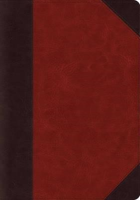 ESV Systematic Theology Study Bible - Trutone Brown (Imitation Leather)