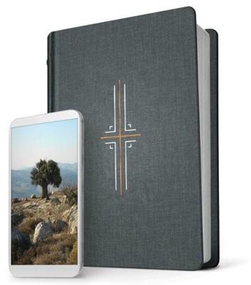 NLT Filament Study Bible Gray Cloth (Hard Cover)