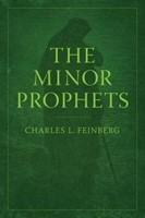 Minor Prophets (Paperback)