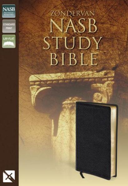 NASB Zondervan Study Bible Black Bnd