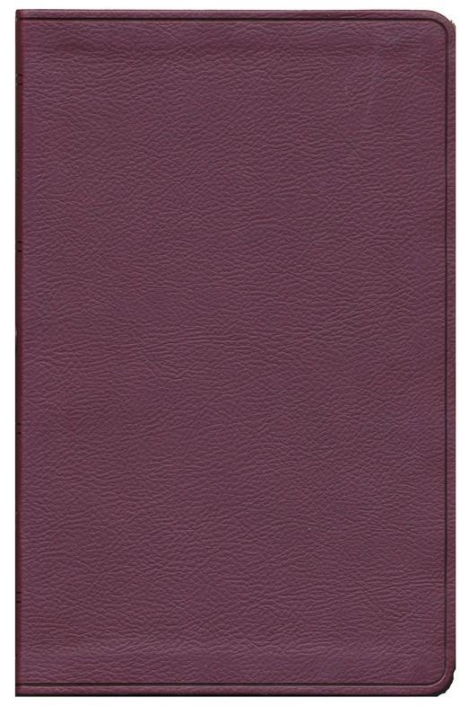ESV Value Thinline Bible - Trutone Burgundy