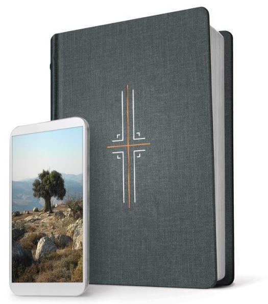 NLT Filament Study Bible Gray Cloth